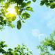 花粉が去ってまた一難、今年の紫外線・梅雨で気になる話