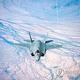 ステルス戦闘機「F35A」(防衛事業庁提供)=(聯合ニュース)≪転載・転用禁止≫