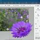 Windows 10「ペイント 3D」の画像切り抜きツールが秀逸! 簡単すぎる操作で高度な切り取りと背景処理に驚く