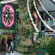 """ロスフラワーが彩る。「ラフォーレ原宿」が""""サステナビリティ""""をテーマにしたクリスマスイベントを開催中!"""