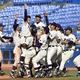 全日本大学野球最終日  仏教大を破って38年ぶり6度目の優勝を果たし、喜ぶ明大ナイン=神宮