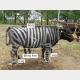 虫除け革命! 牛を「シマウマ柄」にするだけで害虫が寄らなくなるという研究
