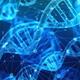 「絶滅した2種類の未知の人類」の痕跡が現代に生きるヒトのDNAに存在している