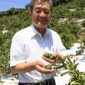 秋竹新吾(あきたけ・しんご)●株式会社早和果樹園代表取締役社