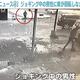 ベラルーシ 車が回転しながらジョギング中の男性を襲撃