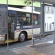 渋谷区のバス停で路上生活の女性殴られ死亡 近所に住む男を逮捕