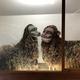 トラウマになりそうだけど、どこかかわいい…沖縄の獅子舞がふさふさで完全に生き物みたい
